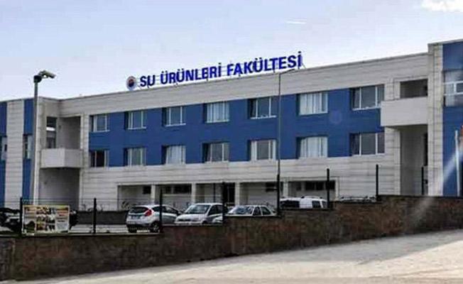 Sinop Üniversitesi Su Ürünleri Fakültesinde 70 Personel 9 Öğrenci Var!