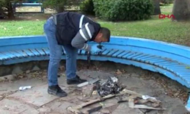 Yavru kediyi yakarak öldüren canileri, polis her yerde arıyor