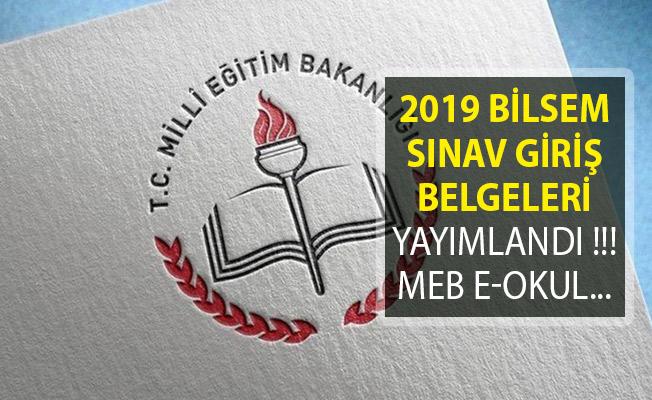 2019 BİLSEM Sınav Giriş Belgeleri Yayımlandı!