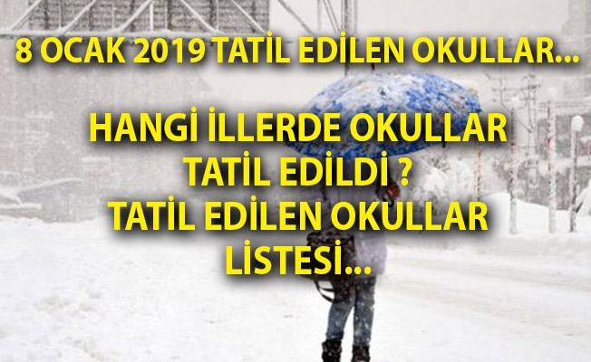 8 Ocak Kar Tatili Olan İl Ve İlçeler Listesi! İstanbul Ve Ankara'da Okullar Tatil Mi?