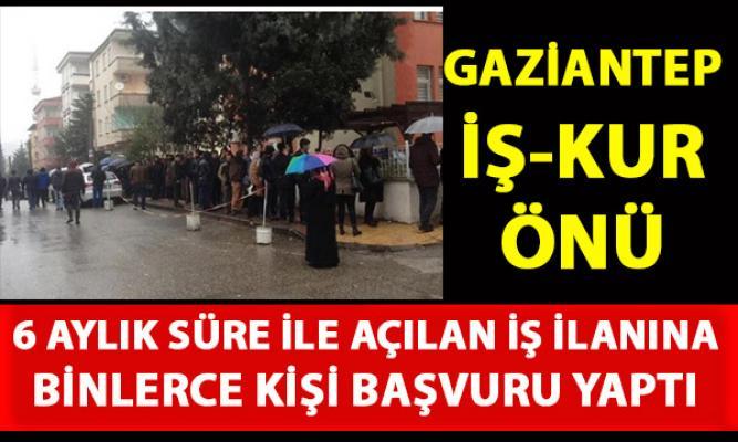 Gaziantep'te 6 aylık geçici iş ilanı için binlerce kişi başvuru yaptı