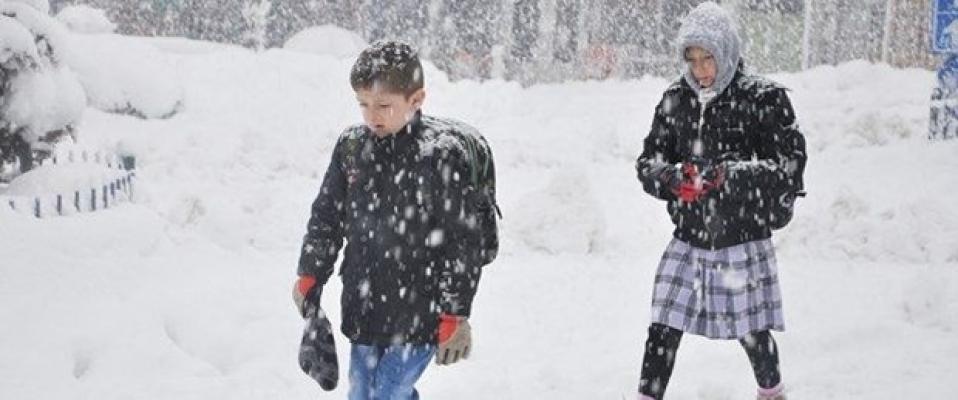 Kar Yağışı İki İlde Okulları Tatil Ettirdi