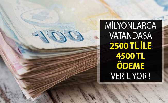 Milyonlarca Vatandaşa 2500 TL İle 4500 TL Ödeme Veriliyor!