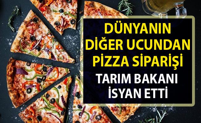 Londra'dan Nijerya'ya pizza siparişi!.. Uluslar arası sipariş ağı kuruldu