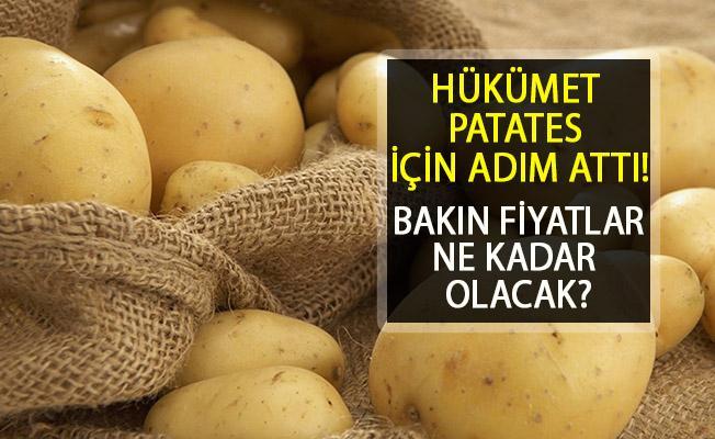 Patates Fiyatları İçin Adım Atıldı! Gümrük Vergisi Süresi Uzatıldı