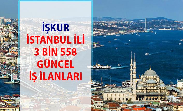 İŞKUR İş ilanları İstanbul! Avrupa-Anadolu personel alımı iş başvurusu