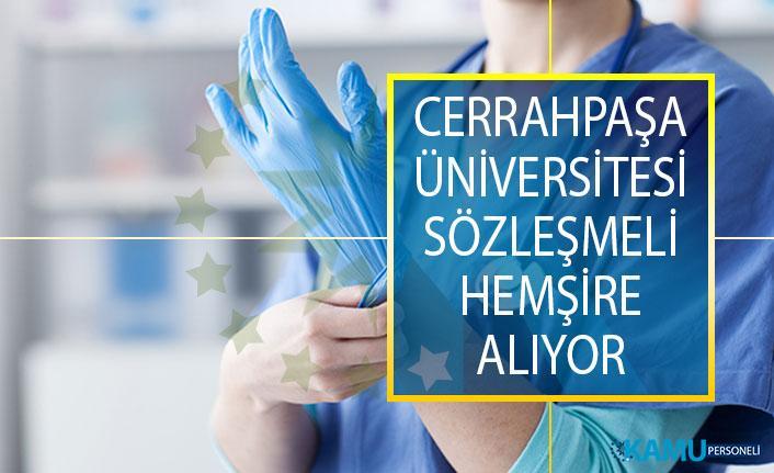 Cerrahpaşa Üniversitesi, Sağlık Meslek Lisesi Mezunu 40 sözleşmeli hemşire alımı ilanı yayınladı!