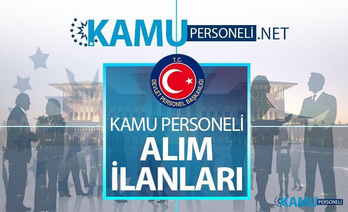 Yalova Üniversitesi 21 kamu personeli alımı için yeni ilan yayınlandı! Akademik personel alımı başvuru şartları nelerdir?