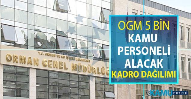 OGM 5 Bin Kamu Personeli Alımı Yapacak ! Kadro Dağılımı Belli Oldu