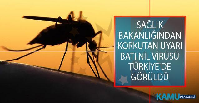 Sağlık Bakanlığından Korkutan Uyarı! Batı Nil Virüsü Türkiye'de Görüldü