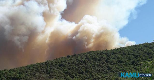Bursa'da Orman Yangını: Kısa Sürede Büyüdü