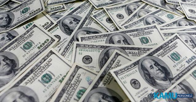 Dolar Fiyatları Son Bir Ayın En Yüksek Seviyesine Çıktı! 20 Ağustos Dolar Ne Kadar? Dolar Neden Yükseliyor?