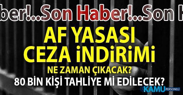 AKP sözcüsü Çelik'ten son dakika 2019 Af Yasası, Ceza İndirimi ve yargı reformu hakkında flaş açıklama! Yargı Strateji belgesi meclise ne zaman geliyor?