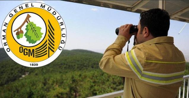 Tarım ve Orman Bakanlığı KPSS 60 ile önlisans mezunu 2 bin 700 orman muhafaza memuru alacak! OGM memur alımı başvuru şartları nelerdir?