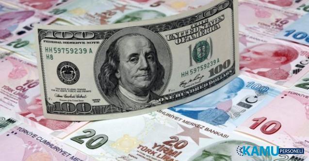 Türk yatırımcı TL'den kaçıyor Dolar'a tutunuyor! Döviz alımı tarihi zirvede net rezervler azaldı