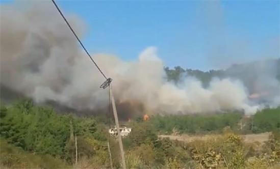 Osmaniye'nin Düziçi ilçesinde orman yangını!