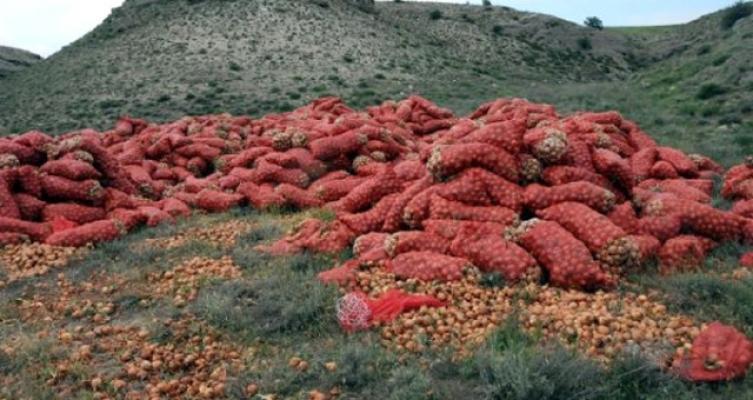 Çiftçiler kuru soğan ihracatının kısıtlamasına tepki gösterdi!