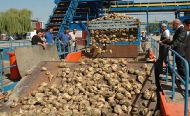 Şeker Fabrikaları duyurdu : Kura ile personel alımı sonuçlarının açıklanacağı tarih belli oldu