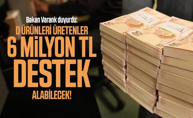 Bakan Varank duyurdu: O ürünleri üretenler 6 milyon TL destek alabilecek!