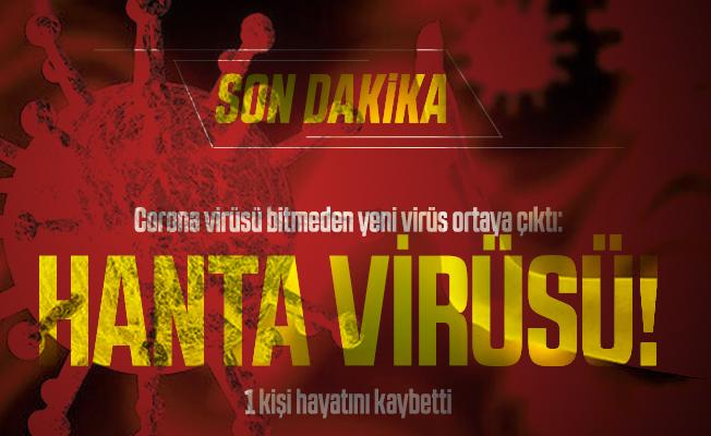 Corona virüsü bitmeden yeni virüs ortaya çıktı: Hanta virüsü! 1 kişi hayatını kaybetti