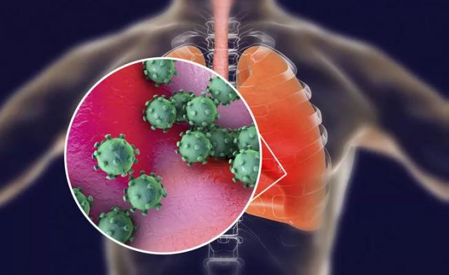 CoronaVirüs aşısı için flaş gelişme! Dünya Sağlık Örgütü duyurdu: Korona virüsü aşısı testleri başladı