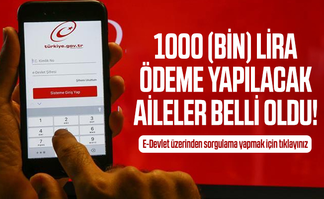 1000 (bin) lira ödeme yapılacak aileler belli oldu! E-Devlet üzerinden sorgulama yapmak için tıklayınız
