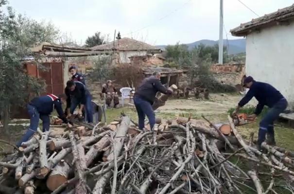 Şehit annesinin odunlarını jandarma kırdı!