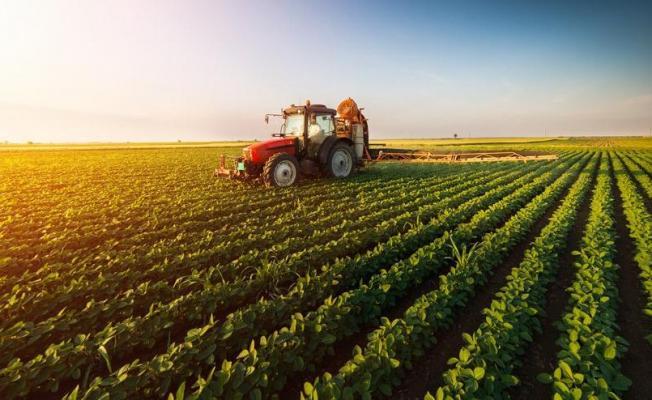 Tarıma Özel Koronavirüs Desteği