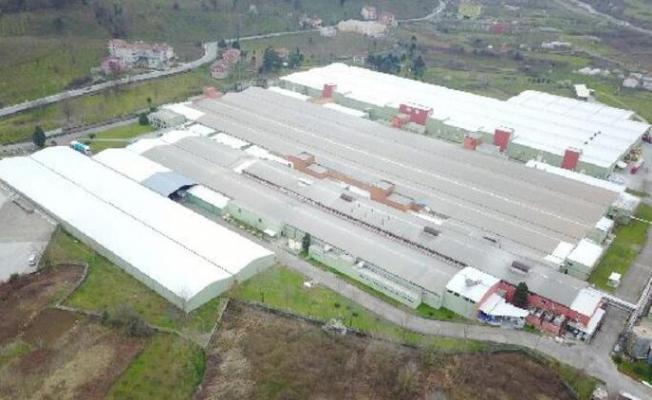 800 kişinin çalıştığı dev fabrikada koronavirüs paniği! Vaka sayıları artıyor!