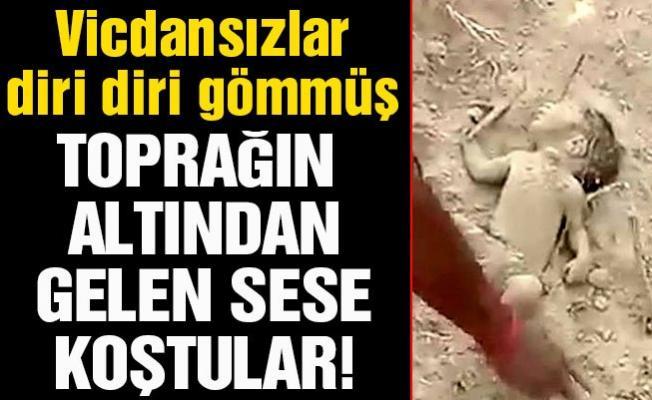 Diri diri toprağa gömülen bebeği son anda kurtardılar!
