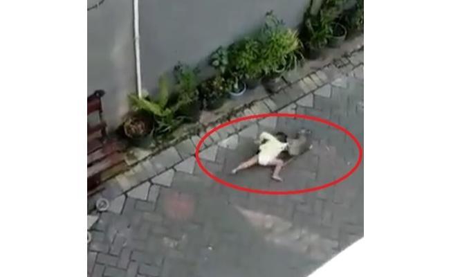 Şoke eden görüntüler! Maymun bisikletiyle çocuk kaçırmaya çalıştı!