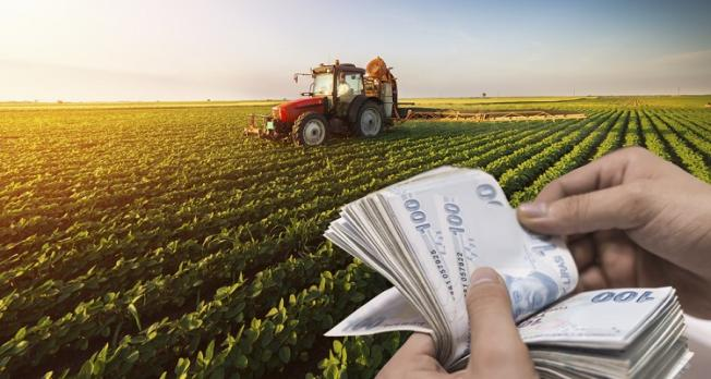 Tarımsal desteklerde flaş değişiklik! Resmi Gazete'de yayımlandı