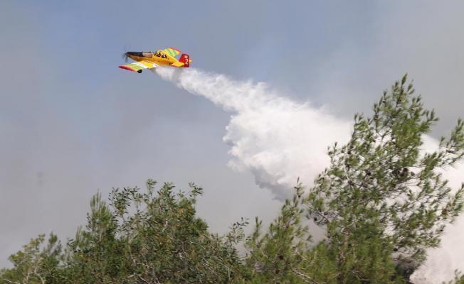 Türkiye, Kuzey Kıbrıs'taki orman yangınını söndümek için uçak gönderemedi!