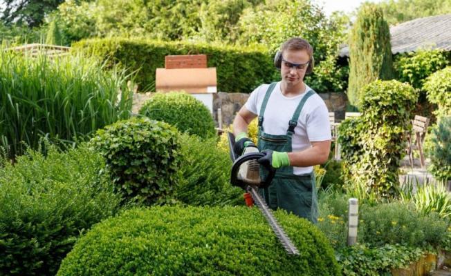 Belediyeye park ve bahçede görevlendirilecek personel alınacak! Başvuru detayları belli oldu!