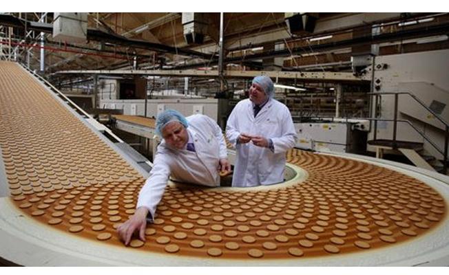 Bisküvi imalat fabrikasına 609 işçi alımı yapılacak!