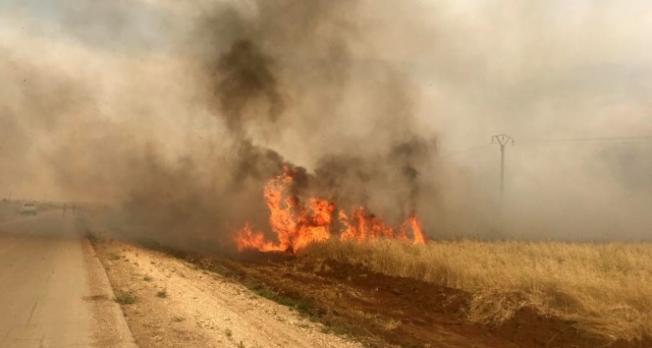 Hain PKK tarım arazilerini ateşe verdi!