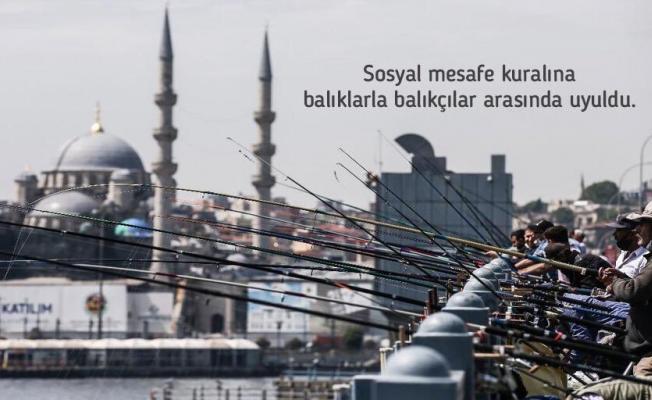 Sağlık Bakanı Koca köprüde balık tutanlara rast gelmesin dedi!