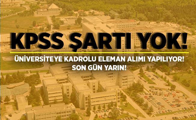 Üniversiteye kadrolu 60 personel alımı yapılıyor! KPSS şartı yok! Başvurular 29 Haziran'da sona eriyor!