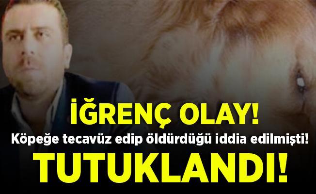 Ankara'da iğrenç olay! Köpeğe tecavüz edip, öldürdüğü iddia edilen Volkan Uzun tutuklandı!