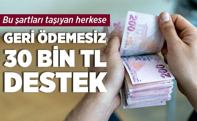 Bu şartları taşıyan herkese devletten geri ödemesiz 30 bin TL yardım!