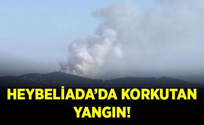 Son dakika Heybeliada'da korkutan orman yangını!