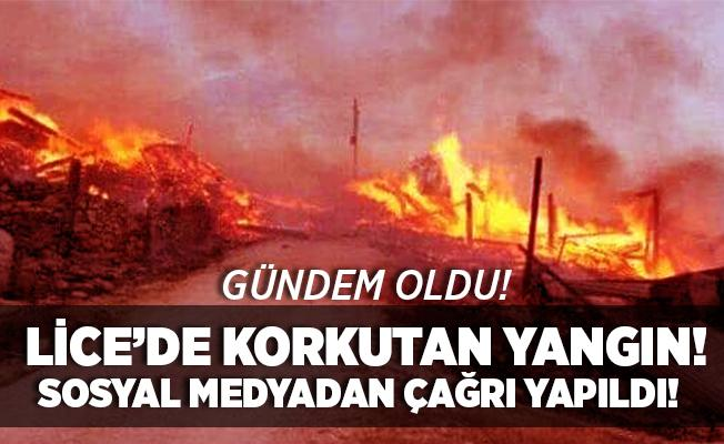 Sosyal medyada gündem oldu! Lice'de korkutan yangın! Vatandaşlar sosyal medyadan yardım istiyor!