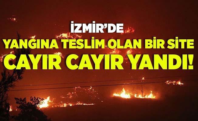 İzmir'deki orman yangını büyüyor! 79 haneli site küle döndü!