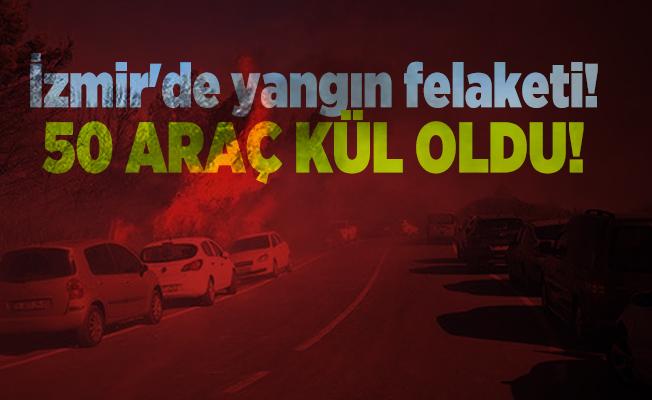 İzmir'de yangın felaketi! 50 araç kül oldu!
