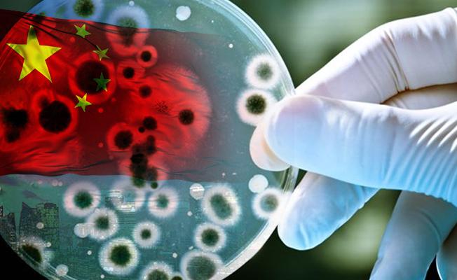 Çin'de brusella bakterisi salgını paniği! 3 bin 245 vaka görüldü!