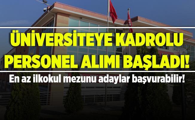 Kastamonu Üniversitesi'ne kadrolu personel alımları başladı! En az ilkokul mezunu adaylar başvuruda bulunabilecek!