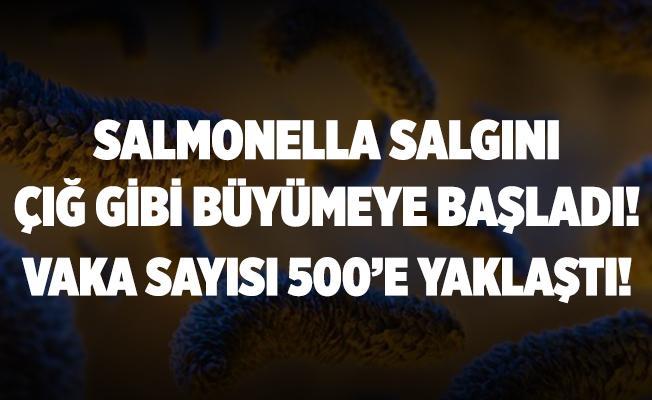 Koronavirüs bitmeden Salmonella salgını çığ gibi büyümeye başladı! Vaka sayısı 500'e dayandı!