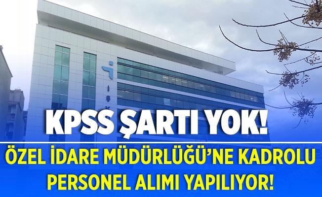 Özel İdare Müdürlüğü'ne kadrolu personel alımları başladı! KPSS şartı yok!