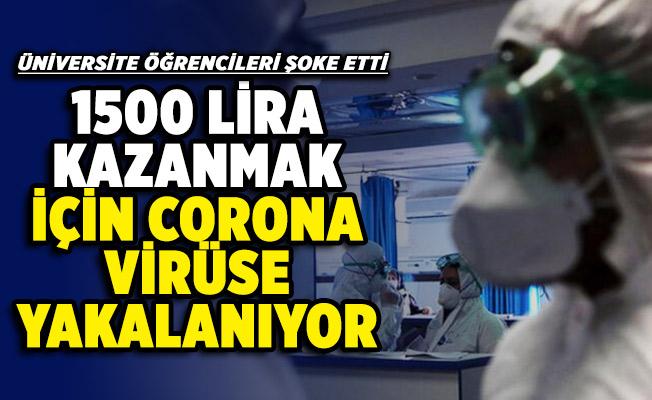 İş arayan üniversite öğrencileri şoke etti! 1500 TL Para kazanmak için bilerek koronavirüse yakalanıyorlar
