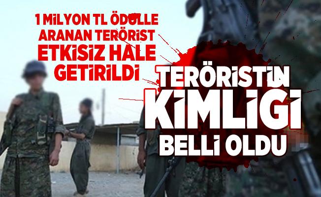 Son dakika haberi... İçişleri Bakanlığı duyurdu! 1 milyon TL ödülle aranan terörist etkisiz hale getirildi